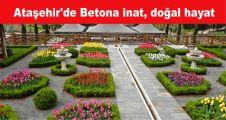 Ataşehir'de Betona inat, doğal hayat