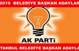 AK Parti'nin Muhtemel İstanbul ilçe belediye...
