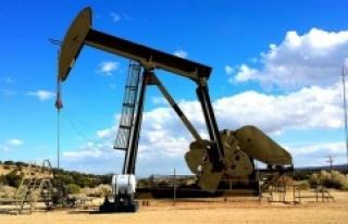 Petrol'de Negatif seviye ne anlama geliyor