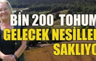 200 çeşit yerli tohumu gelecek nesiller için saklıyor