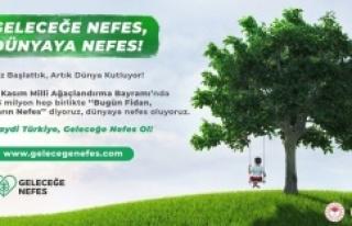 Milli Ağaçlandırma Günü için fidanlar hazır