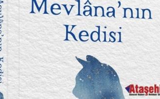 MEVLÂNA'NIN KEDİSİ ROMANI ÇIKTI