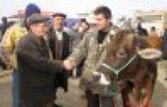 Kurban Satıcıları Şile Otobanını Trafiğe Kapattı