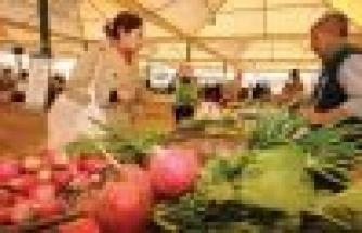 Organik tarım 10 yılda 5 kat arttı