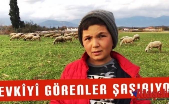 Çoban Şevki herkesi kendine hayran bıraktı