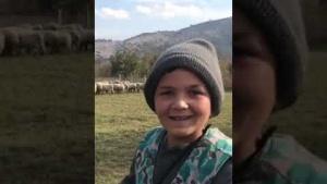 12 yaşındaki Çoban Şevki'nin Hayvancılık için söyledikleri
