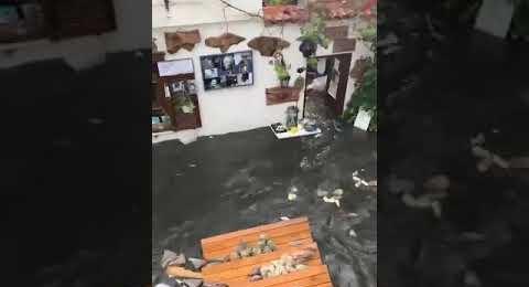 İzmir Seferihisar Deprem Tsunami Görüntüsü 22
