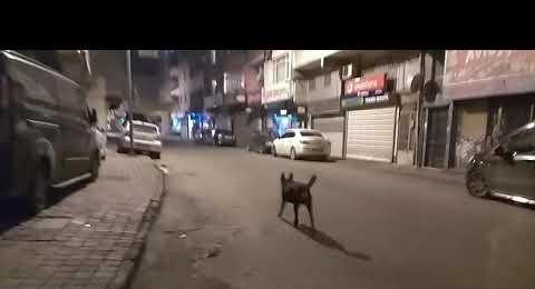 Sokağa Çıkma Uygulamasında Yeni Sahra Mahallesi görüntüsü 19 Aralık 2020