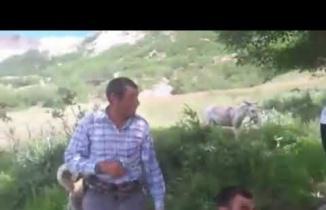 Keçilere Fısıldayan Çoban