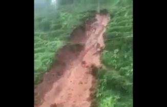 Rize'de Aşırı Yağmur Sel ve Heyelana Sebep oldu