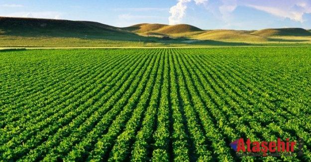 Kahramanmaraş'ın Tarım Arazileri, Masdaf'la Hayat Buluyor