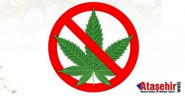 Çocuğunuzun esrar (marihuana, ot) kullandığını nasıl anlarsınız
