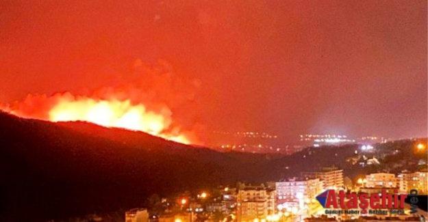 Hatay orman yangını devam ediyor