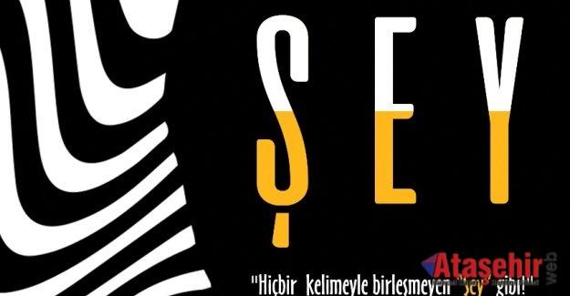 MEHTAP ŞAFAK / ŞEY – ALINTILAR