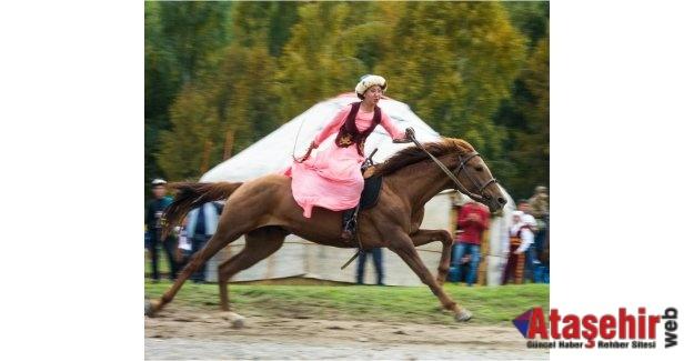 Türk'ün atı kanadıdır.