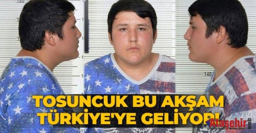 Tosuncuk' Türkiye'ye getiriliyor