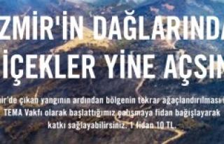 TEMA Vakfı: İzmir için fidan bağışlarınızı...
