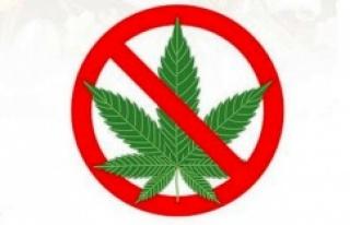 Çocuğunuzun esrar (marihuana, ot) kullandığını...