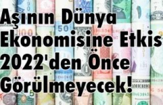 AŞININ DÜNYA EKONOMİSİNE ETKİSİ 2022'DEN ÖNCE...