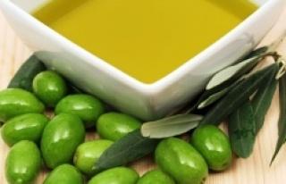 ABD'ye zeytinyağı ihracatında yüzde 30 artış