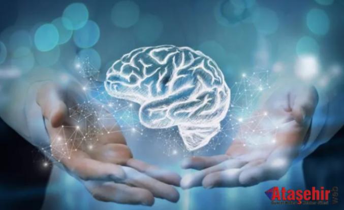 Beyin sağlığı için bu tavsiyelere dikkat!
