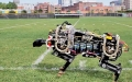 Robot koşmayı öğrendi, MIT Robotic Cheetah