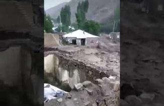 Van'da sel felaketi, Yüzlerce hayvan öldü